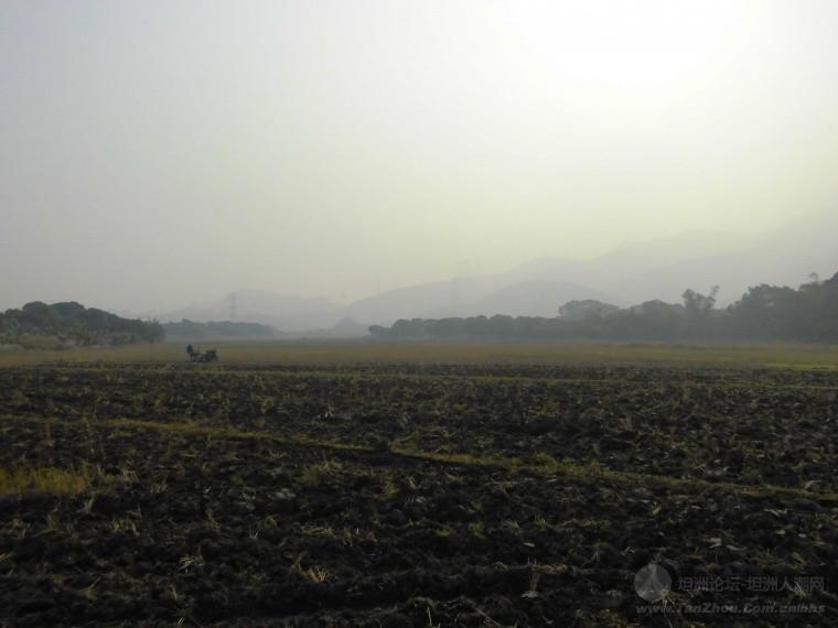 今天的黄杨山の旅(已更新)