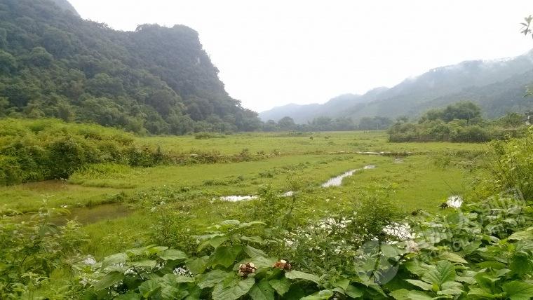 我哪可爱的家乡-活动分享-坦洲论坛-中山坦洲人潮网