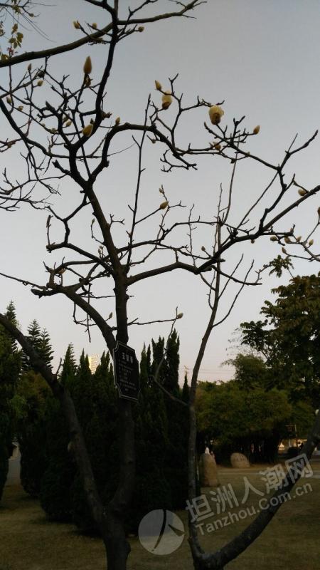 QQ图片20170213102645.jpg