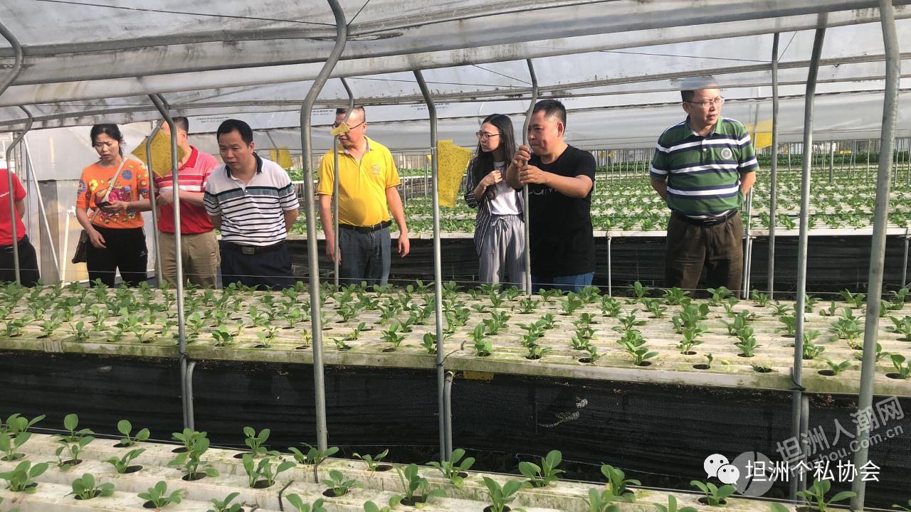 坦洲个私协分会联合坦洲镇市场监管分局举办交流活动