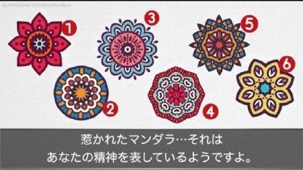 心理测试:这六朵曼陀罗你喜欢哪一朵?测测你的性格...