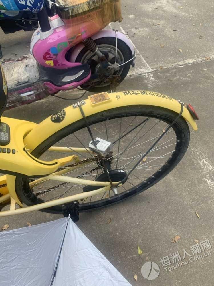 共享单车已不是共享