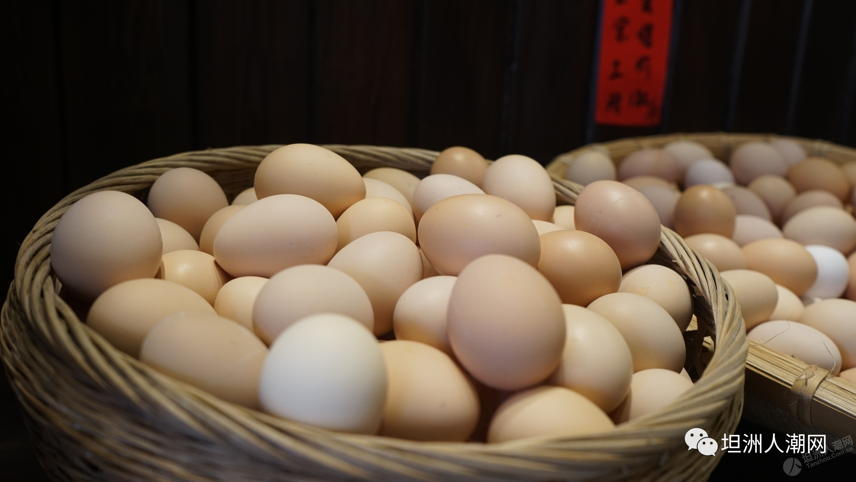 老巷土鸡店来坦洲啦,8.8折尝鲜!老板说:不好吃,全单免费!还有正宗土鸡蛋送~