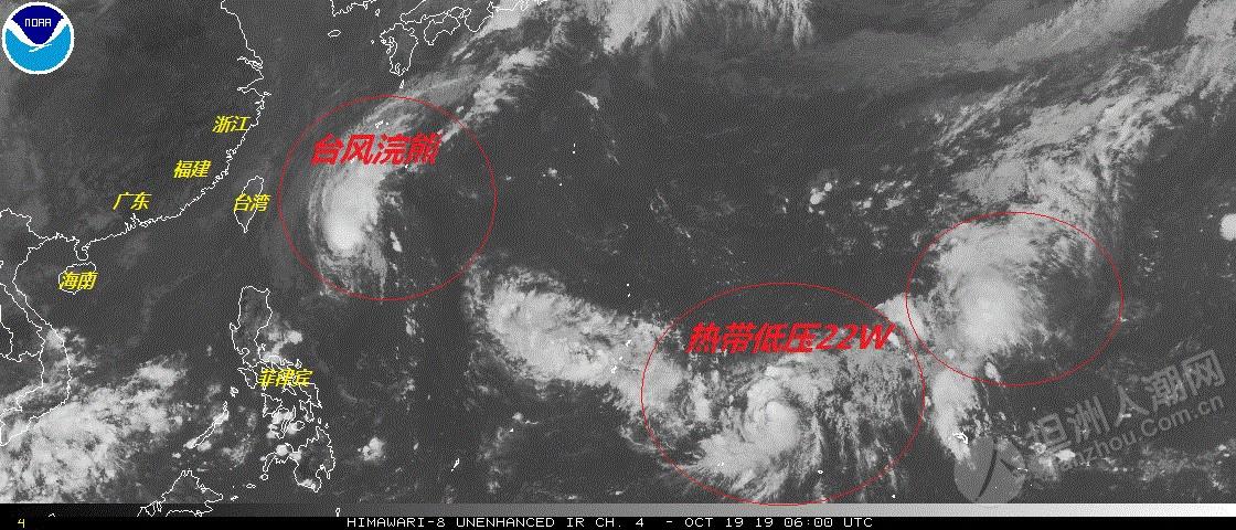 """21号台风""""博罗依""""即将生成!20号台风""""浣熊""""路径有变!影响坦洲吗?"""