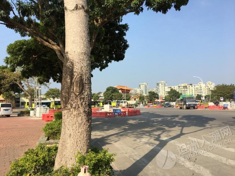 坦洲怡乐园十字路口终于整行人安全岛了!