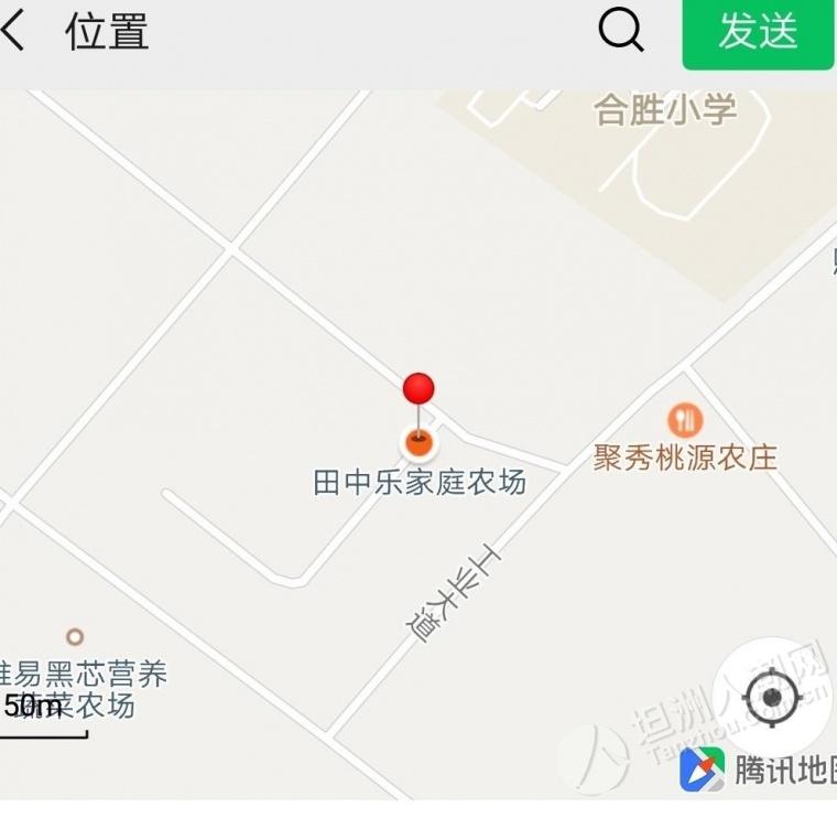 坦洲田中乐家庭农场举行芹菜收割活动(2020.4.4~4.10)