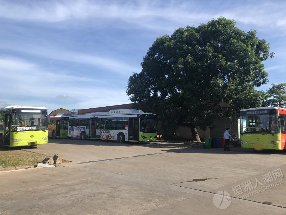 坦洲再无213路公交,新增688路公交做交接,别等错车啦!