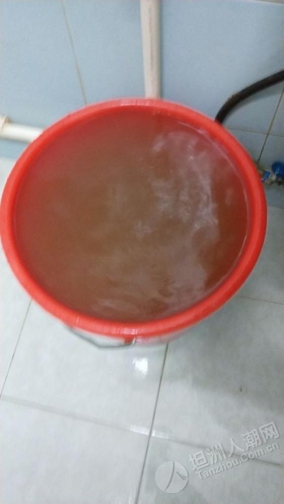 宝鸭山村自来水近期水质堪忧,似黄泥水...