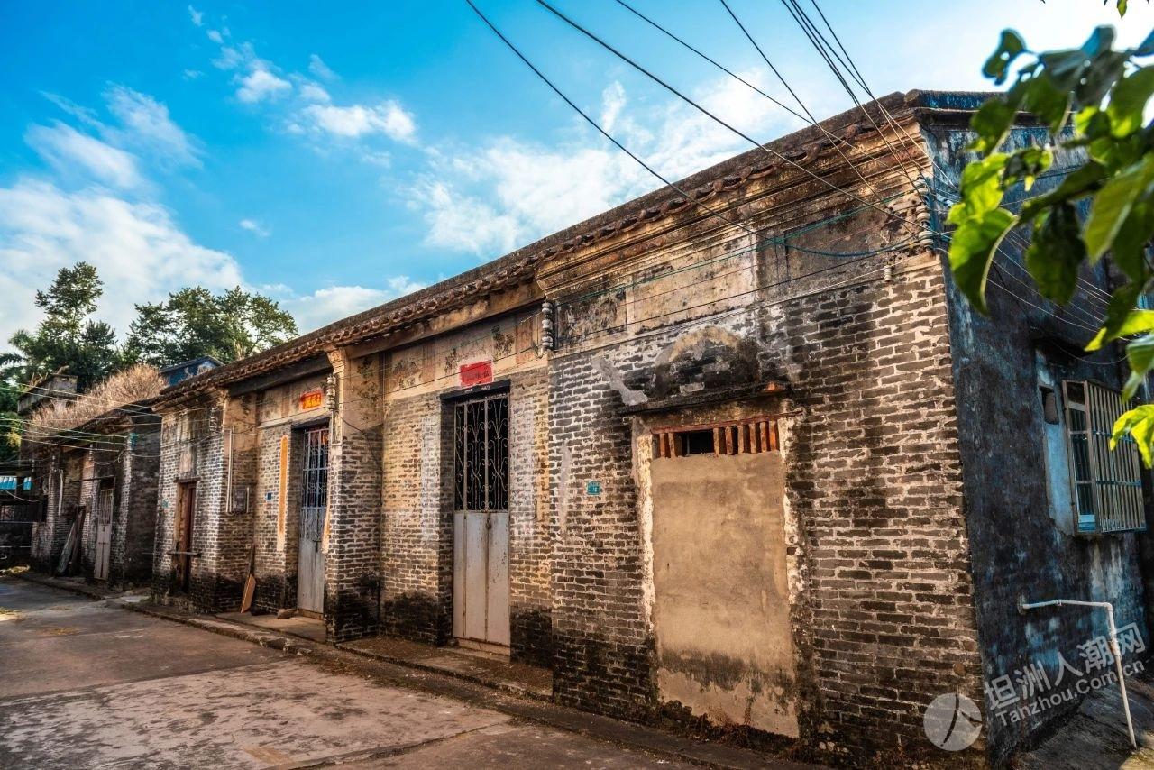 """金花山,红色教育旅游基地,让坦洲历史记忆""""活""""起来"""