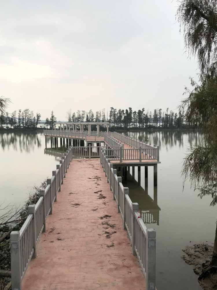 哇!坦洲金斗湾湿地公园