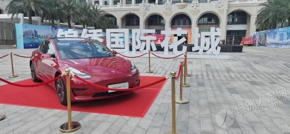 周六坦洲这里可以试乘试驾特斯拉、蔚来等新能源车(2020.11.28)