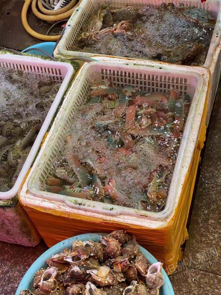粉红色的濑尿虾坦洲街坊你吃过未?