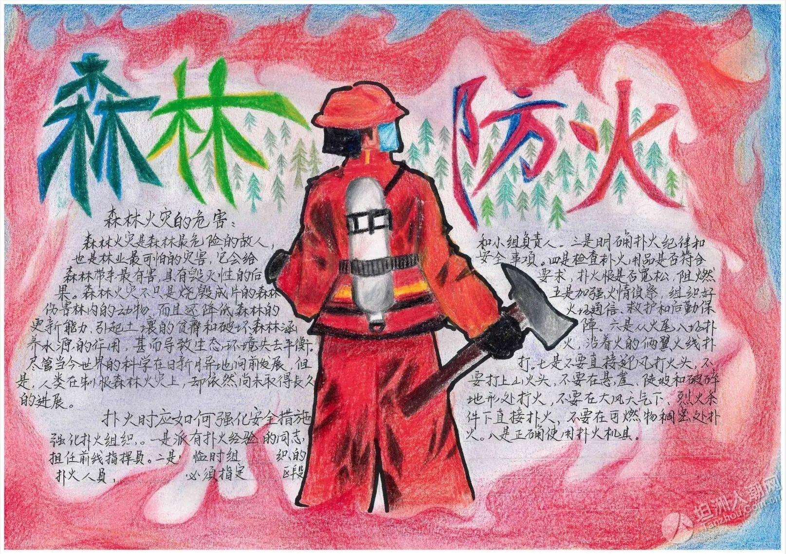 护林防火画出来!来看看坦洲一众学子的画功