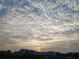 """今早坦洲天空的""""奇景""""你看到了吗?"""