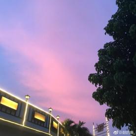 真的,坦洲的晚霞太美了