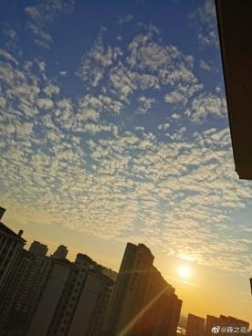 今天坦洲天气真好,天空也很美