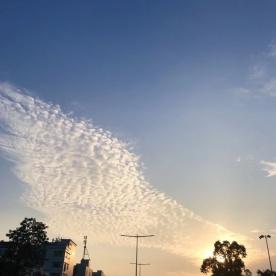 美翻了!天空出现天使之翼!坦洲人看见了吗?